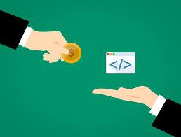 professional web develope
